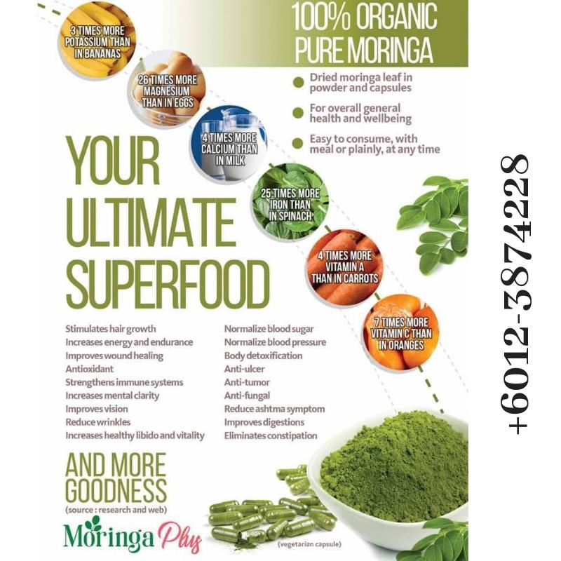 moringa plus capsules superfood malaysia